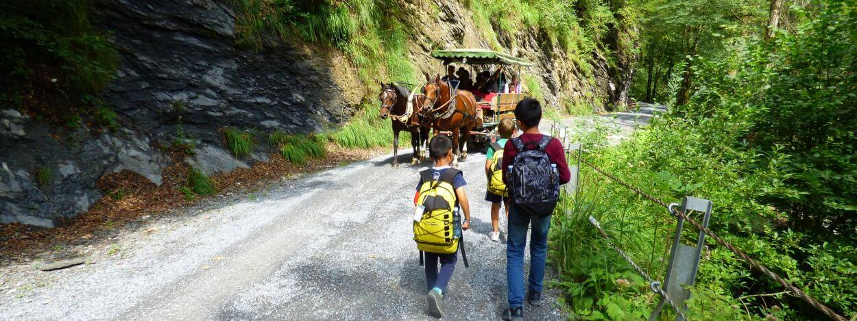 Excursion-with-horses-laax-jtcamp-summer